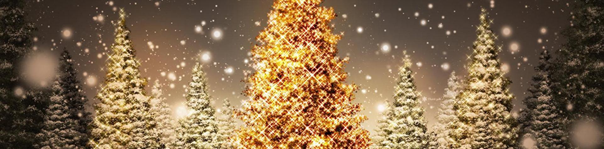 Joyeux noel et bonnes fêtes à tous